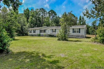 Flagler County Single Family Home For Sale: 4325 Clove Avenue