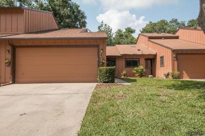 Ormond Beach Single Family Home For Sale: 4 Park Terrace Drive