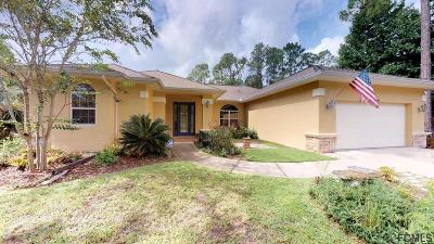 Flagler County Single Family Home For Sale: 164 Rolling Sands Drive