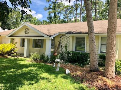Flagler County Single Family Home For Sale: 11 Porpoise Lane