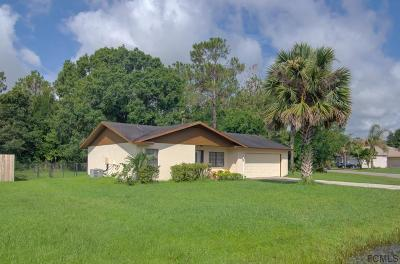 Palm Coast Single Family Home For Sale: 12 Princess Dolores Ln