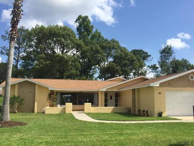 Palm Coast Single Family Home For Sale: 141 Beechwood Ln