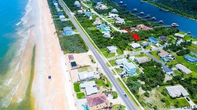 Flagler Beach Single Family Home For Sale: 8 Pelican Ln
