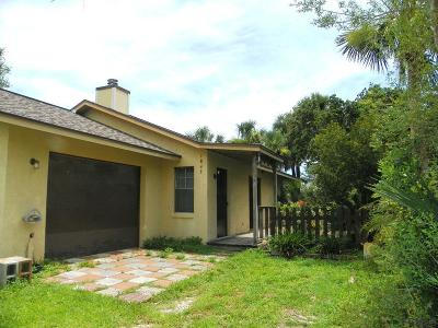 Flagler Beach Single Family Home For Sale: 1843 Flagler Ave S