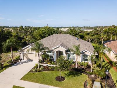 Palm Coast Plantation Single Family Home For Sale: 196 Heron Dr