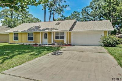 Palm Coast Single Family Home For Sale: 41 Belvedere Ln