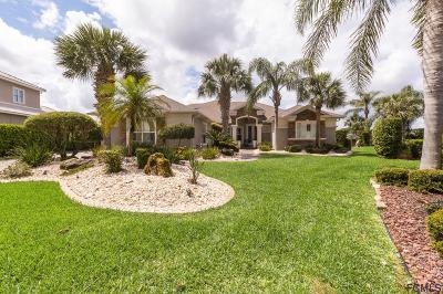 Palm Coast Single Family Home For Sale: 3 Caitlin Ct