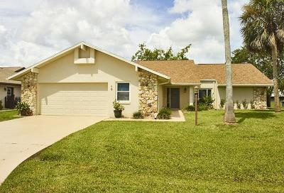 Palm Coast Single Family Home For Sale: 13 Coral Reef Ct N