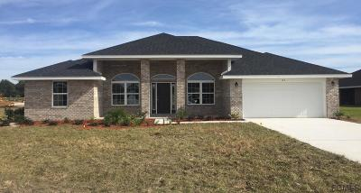 Flagler Beach Single Family Home For Sale: 25 Turtle Ridge Dr