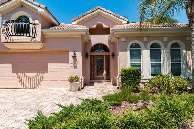 Palm Coast Single Family Home For Sale: 22 Village View Dr