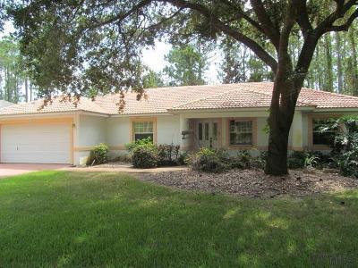 Palm Coast Single Family Home For Sale: 20 Bunker Knolls Lane