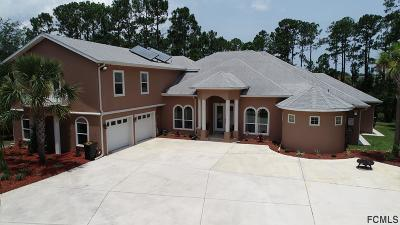 Palm Coast Single Family Home For Sale: 3 N Webwood Place