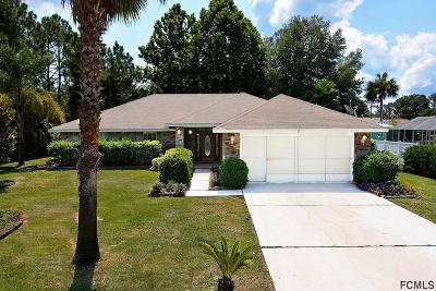Palm Coast Single Family Home For Sale: 53 Wheeling Lane