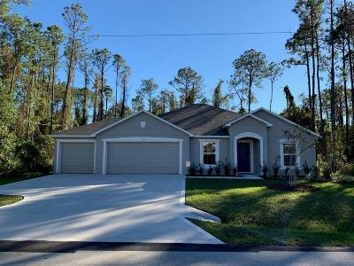 Palm Coast Single Family Home For Sale: 30 Eastmoor Lane