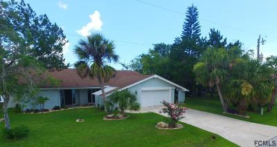 Palm Coast Single Family Home For Sale: 9 Cotton Court
