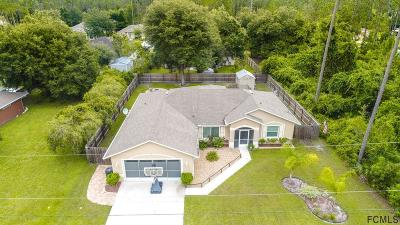 Palm Coast Single Family Home For Sale: 21 Ripcord Lane