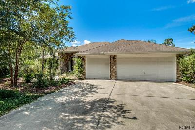 Palm Coast Single Family Home For Sale: 9 Rippling Place