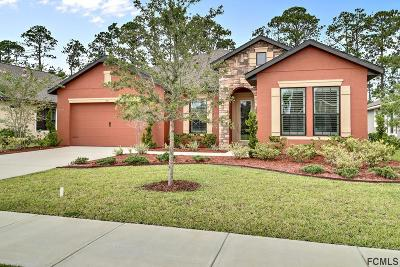 Ormond Beach Single Family Home For Sale: 631 Elk River Drive