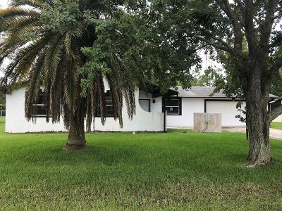 Palm Coast Single Family Home For Sale: 24 Faith Lane