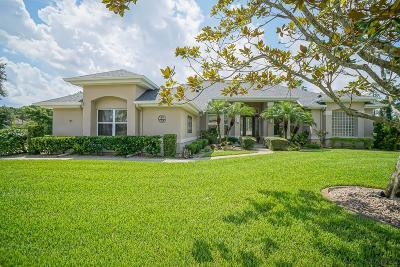 Plantation Bay Single Family Home For Sale: 20 Gale Ln