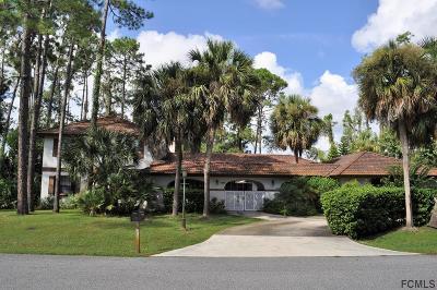 Palm Coast Single Family Home For Sale: 326 Wellington Drive