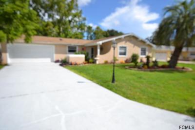 Palm Coast Single Family Home For Sale: 59 Farragut Drive