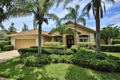 Palm Coast Single Family Home For Sale: 15 Osprey Cir