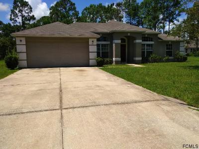Palm Coast Single Family Home For Sale: 25 Birchshire Ln