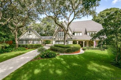 St Augustine Single Family Home For Sale: 300 Redwing Lane