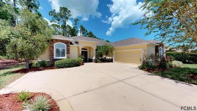 Palm Coast Single Family Home For Sale: 87 Fenimore Lane