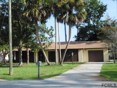 Palm Coast Single Family Home For Sale: 6 Welling Place