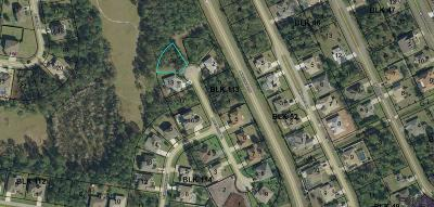Matanzas Woods Residential Lots & Land For Sale: 2 Lewis Shire Pl