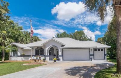 Palm Coast Single Family Home For Sale: 32 Palmer Lane