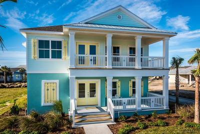 Palm Coast Single Family Home For Sale: 17 Beach Haven Pkwy