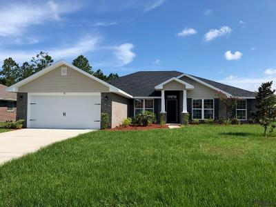 Palm Coast Single Family Home For Sale: 18 Fellowship Drive