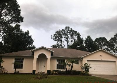 Palm Coast Single Family Home For Sale: 13 Potterville Lane