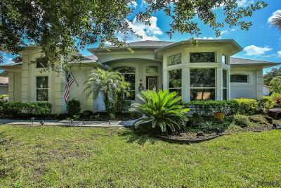 Palm Coast Single Family Home For Sale: 4 Players Circle