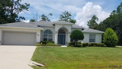 Palm Coast Single Family Home For Sale: 111 White Hall Dr