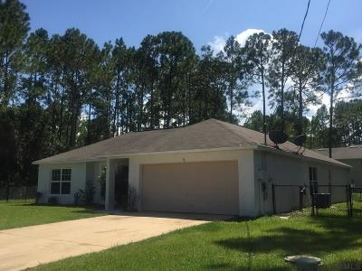 Palm Coast Single Family Home For Sale: 28 Lloyd Trail