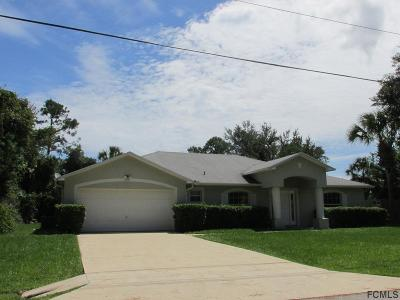 Palm Coast Single Family Home For Sale: 210 Pine Grove Dr