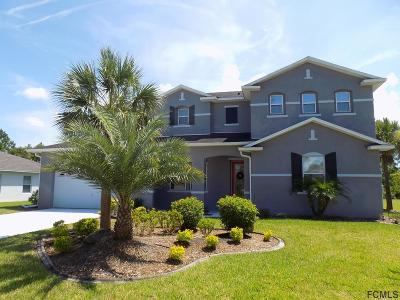 Palm Coast Single Family Home For Sale: 134 London Dr