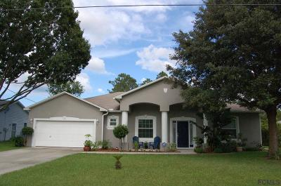 Palm Coast Single Family Home For Sale: 6 Selene Pl