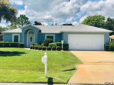 Palm Coast Single Family Home For Sale: 45 Fariston Place