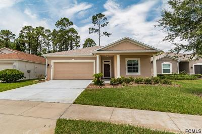 Daytona Beach Single Family Home For Sale: 357 Dahoon Holly Drive
