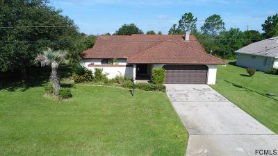 Palm Coast Single Family Home For Sale: 9 Lysander Lane