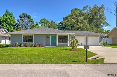Palm Coast Single Family Home For Sale: 91 Forsythe Ln