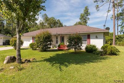 Palm Coast Single Family Home For Sale: 12 Zerington Court