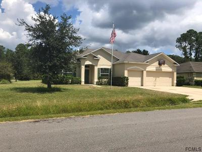 Palm Coast Single Family Home For Sale: 20 Regina Lane