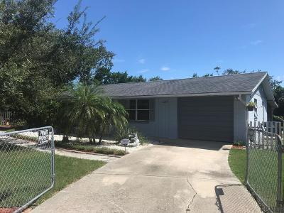 Ormond Beach Single Family Home For Sale: 1317 Fleming Ave