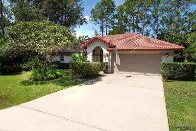 Palm Coast Single Family Home For Sale: 12 Village Circle